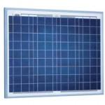 Module photovoltaïque SOLARWORLD SW DB 50 poly RGA - cellules polycristallines - 12V - 50Wc